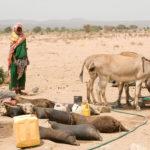 Etiopia: la crisi umanitaria è sempre più grave